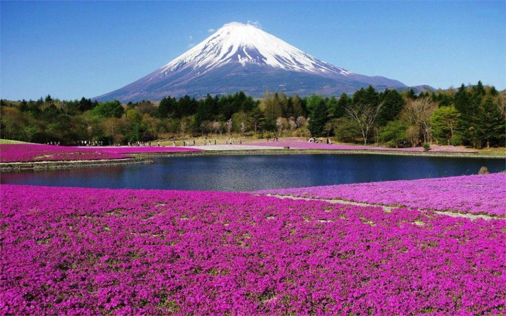 Kết quả hình ảnh cho ngũ hồ quanh núi Phú Sĩ