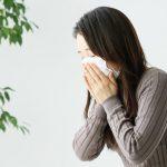 Bệnh dị ứng phấn hoa ở Nhật (花粉症) và những điều cần biết